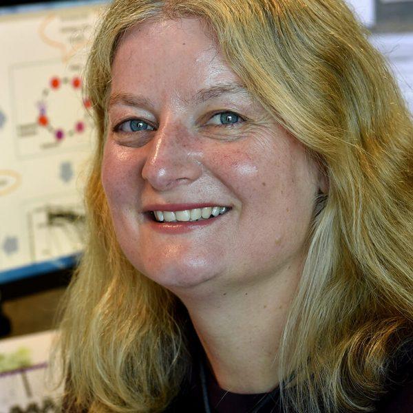 Professor Julie Simpson